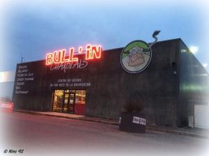 bullin (1)