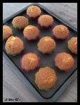 cupcakes (12)